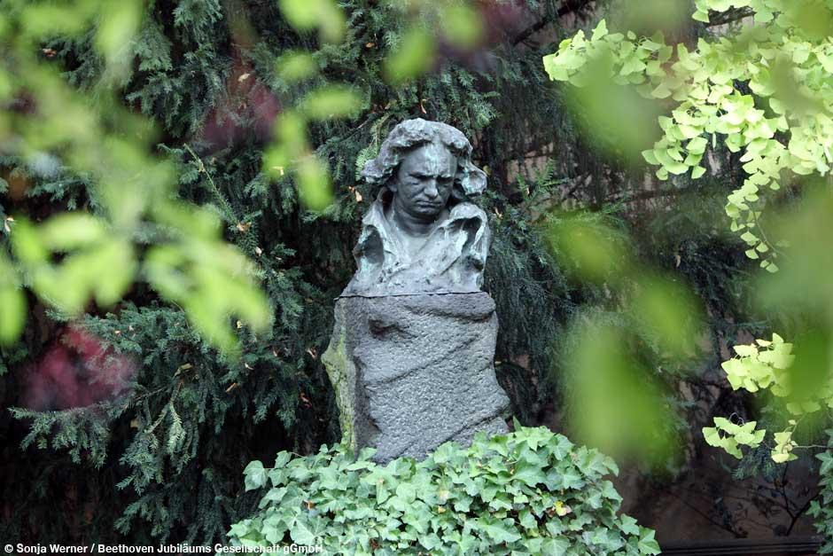 Bonn, el regreso de Beethoven