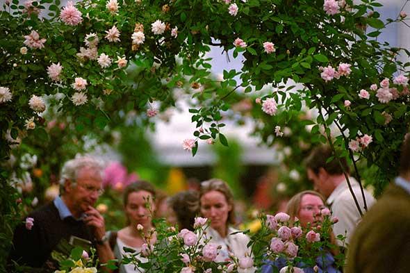 Visitantes en la Royal Horticultural Society de Chelsea, en Londres