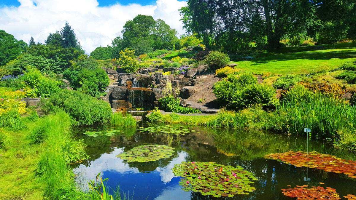 Jardín Botánico de Oslo. © Tu Gran Viaje