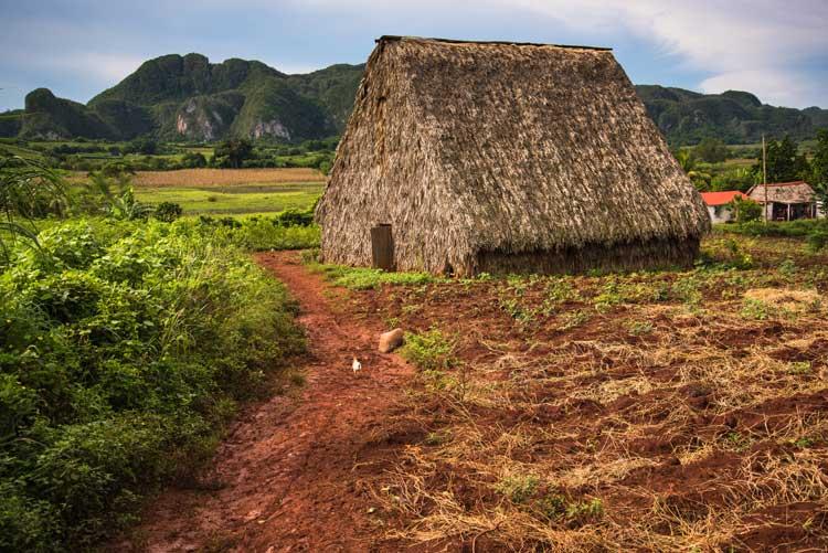 Valle de los ingenios, Cuba. Naturaleza y eco-diversidad en el Caribe   Tu Gran Viaje. Revista de viajes y turismo