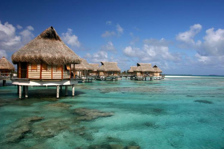 | Naturaleza en las islas del océano Pacífico | Tu Gran Viaje