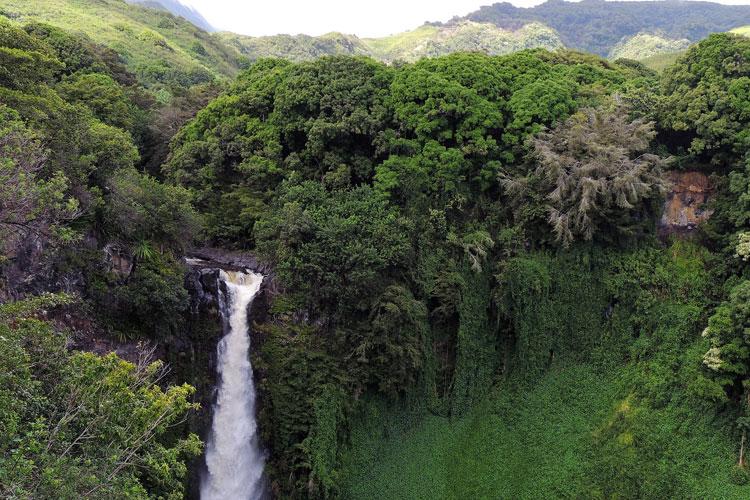 | Naturaleza en las islas del Pacífico | Tu Gran Viaje