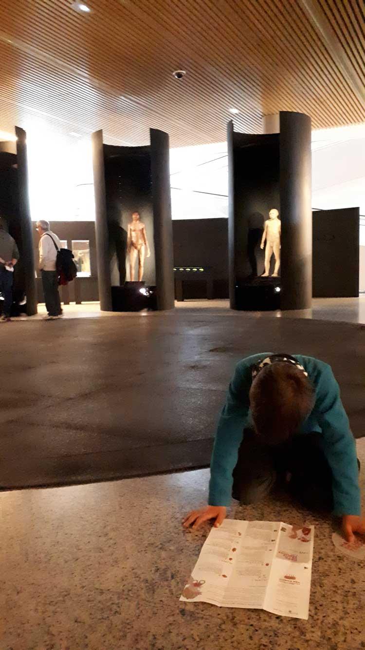 Visitar Atapuerca Museo de la Evolución Humana de Burgos © Tu Gran Viaje