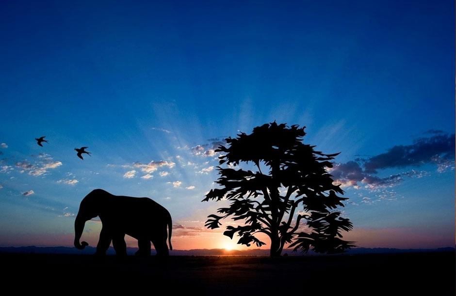 Los amaneceres más bellos del mundo | Tu Gran Viaje