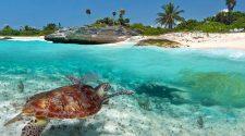 ¡Nada como ser un Gran Viajero previsor! Anticípate y reserva ya tus vacaciones de verano 2019 con esta espectacular oferta de Todo Incluido en la Riviera Maya.
