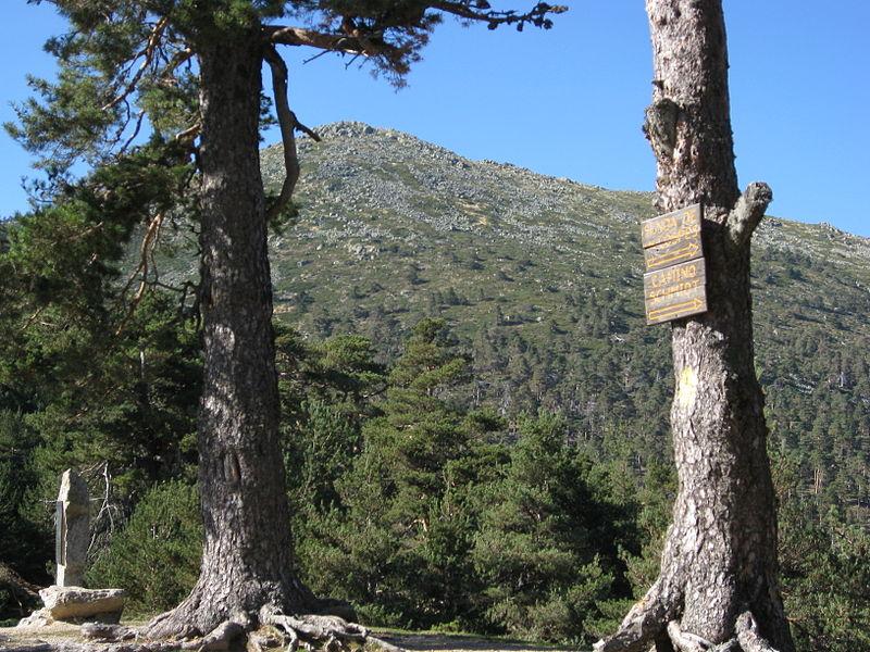 Rutas de montaña para toda la familia | Tu Gran Viaje