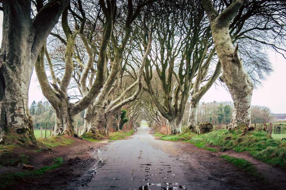 Mapa mágico de Irlanda | Tu Gran Viaje