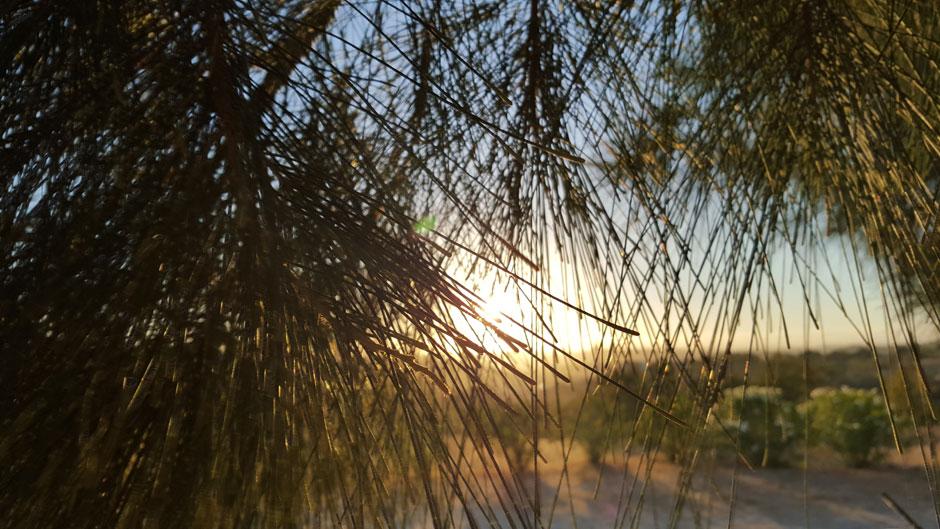 De ruta en coche por el Algarve, la esquina más bella de Europa