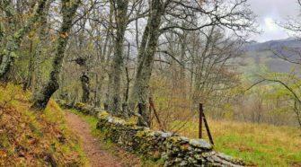 escapada por la Sierra Norte de Madrid | Tu Gran Viaje