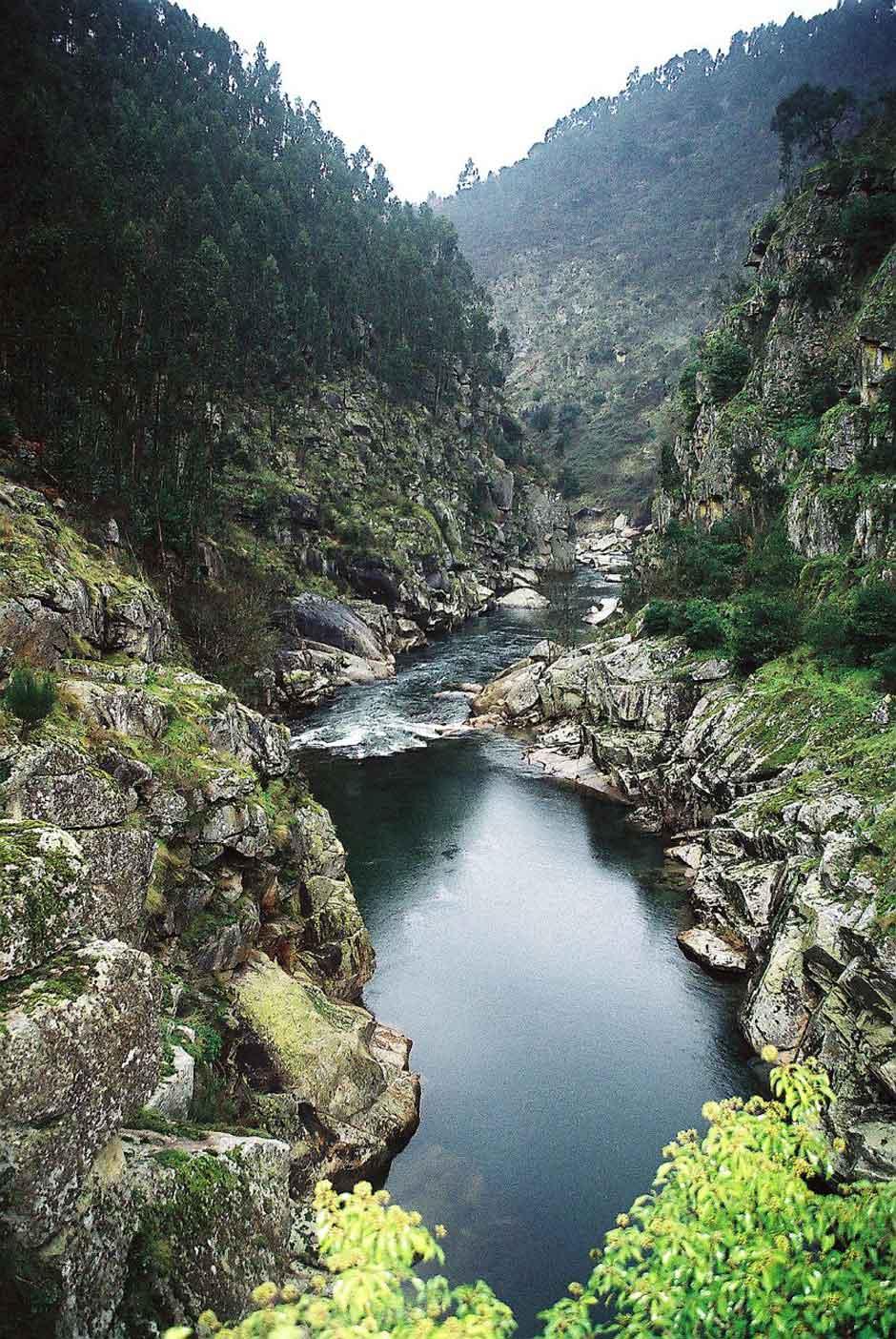 La ruta de las pasarelas del río Paiva Portugal | Tu Gran Viaje