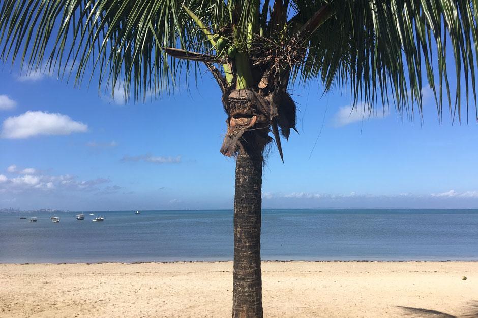Las playas de Salvador de Bahía | Tu Gran Viaje |