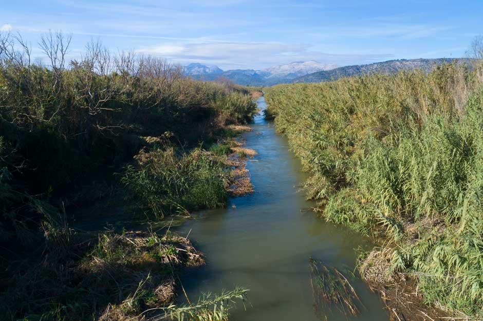 Reserva Natural de S ́Albufereta   Tu Gran Viaje