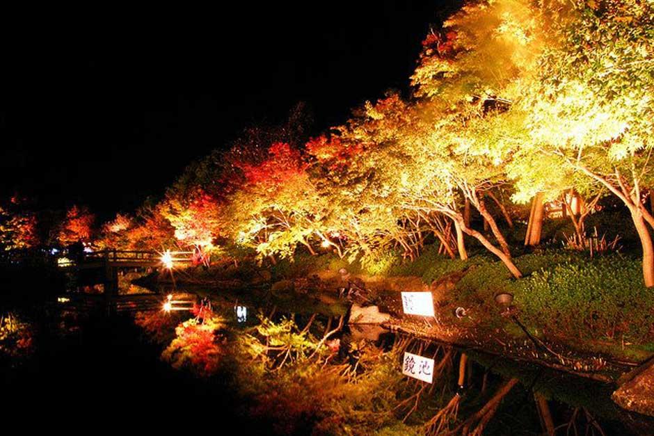 El espectáculo de las luces de invierno en Japón | Tu Gran Viaje