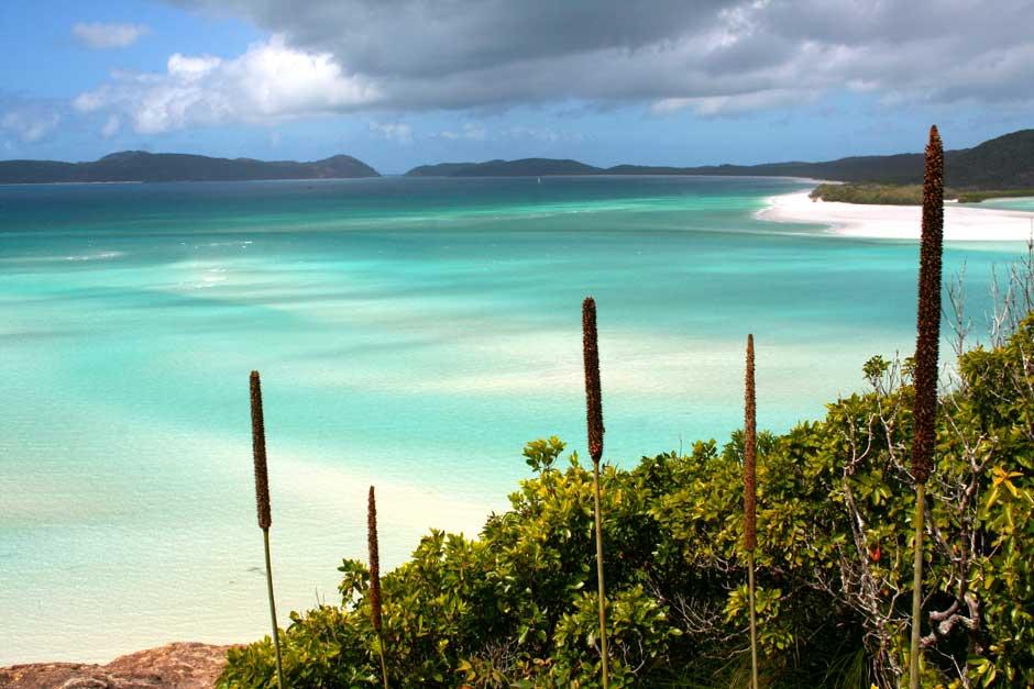 Whitehaven, la mejor playa del mundo de Tripadvisor en Tu Gran Viaje