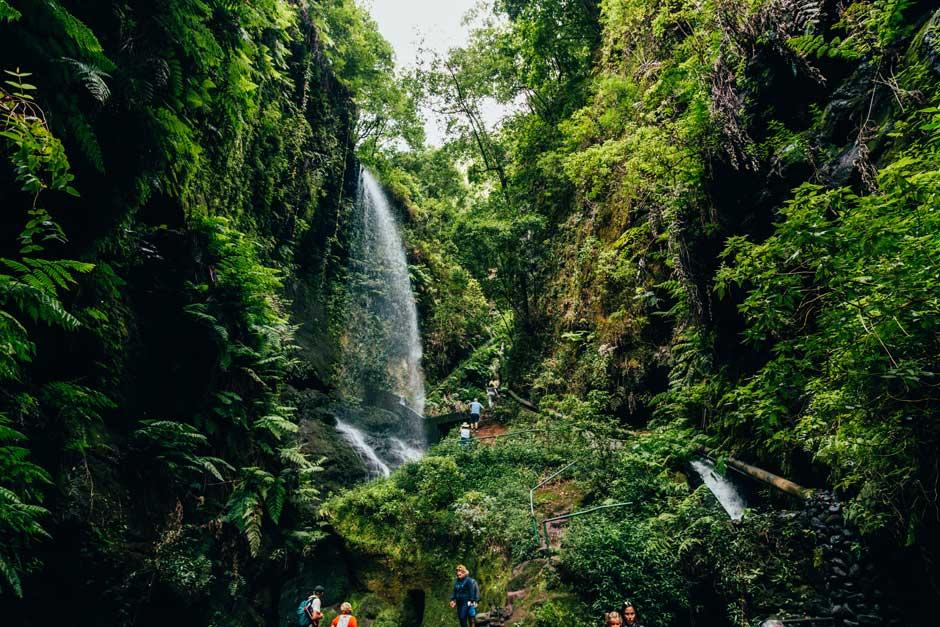 Escapada viajar La Palma primavera Tu Gran Viaje