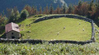 Efecto Navarra viajar a Navarra Verano 2021 | Tu Gran Viaje
