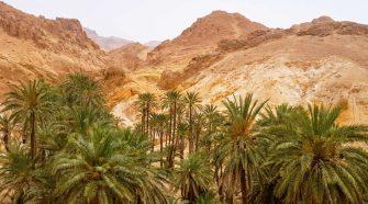 Oasis de Chebika, Túnez. © Tu Gran Viaje Oasis del mundo
