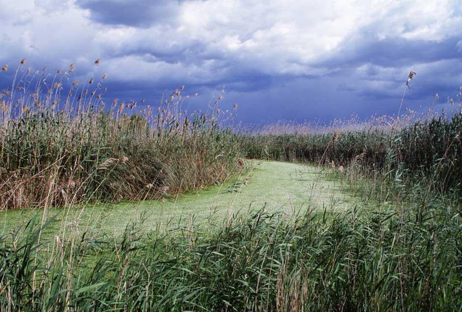 Reserva Natural de S ́Albufereta | Tu Gran Viaje Los Senderos Azules, las mejores rutas de senderismo en Baleares