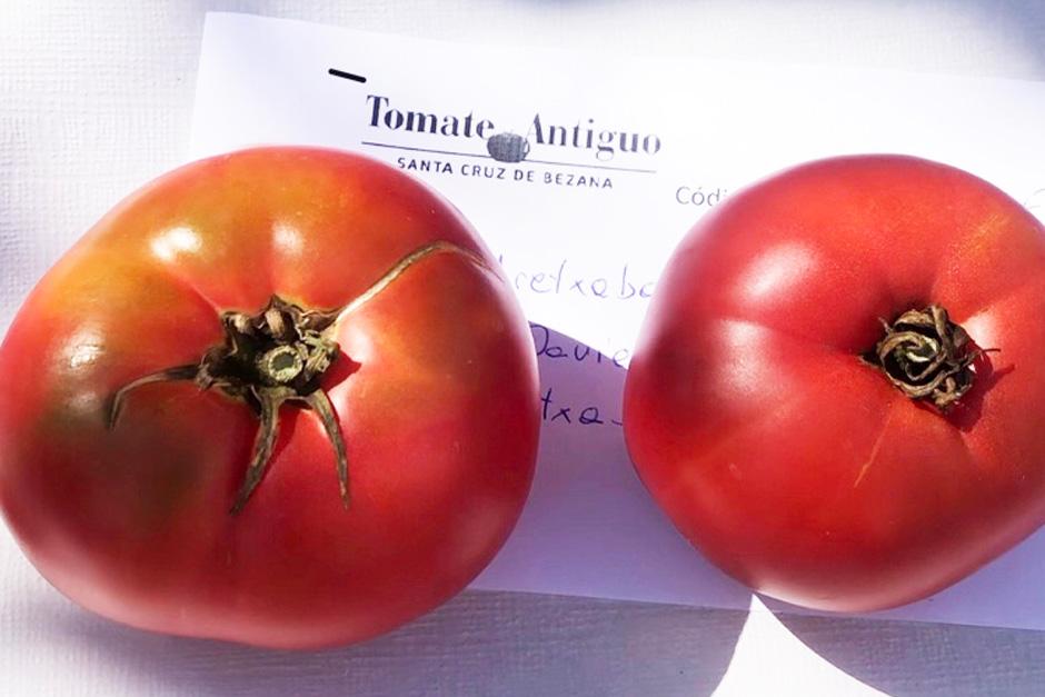 El mejor tomate de España, el de Aretxabaleta | Tu Gran Vaije